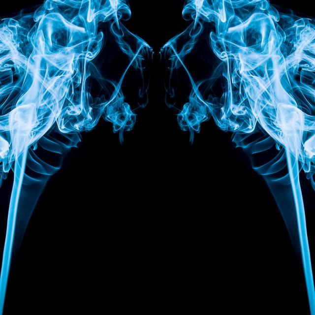 """""""Smoking Lions?"""" stock image"""