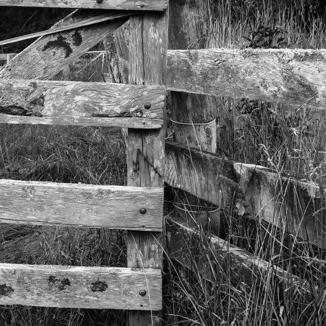 """weathered fence"" stock image"