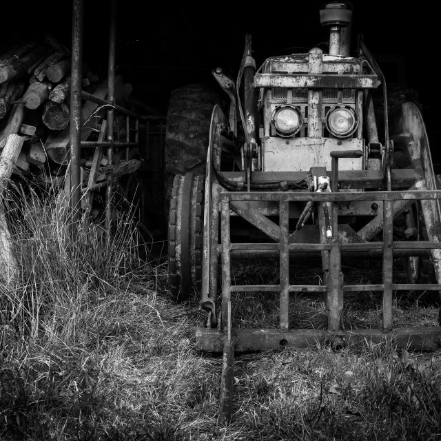 """""""woodshed with tractor"""" stock image"""