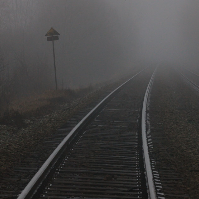 """""""Into the Fog"""" stock image"""