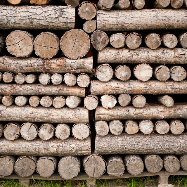"""cut wood fragments heap"" stock image"