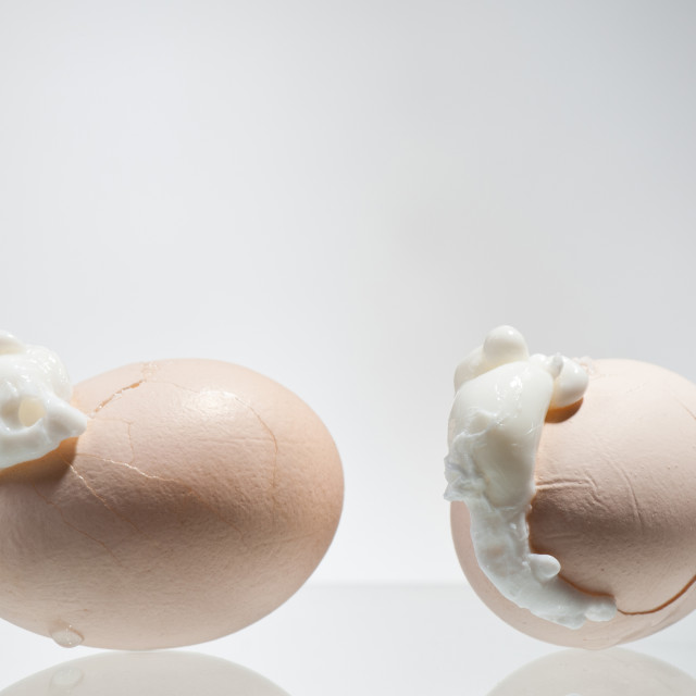 """""""Two boiled cracked eggs shells with egg white"""" stock image"""