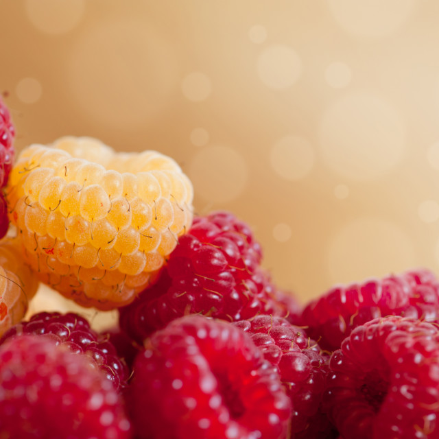 """raspberry fruits in pile with circles bokeh"" stock image"