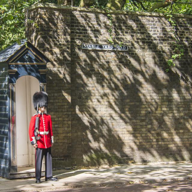 """Royal guard posted outside of St. James Palace"" stock image"