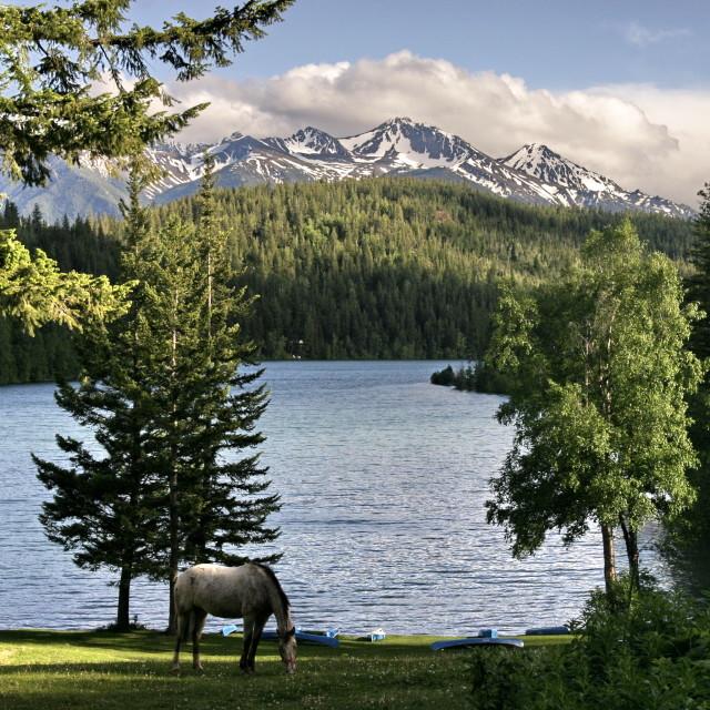 """""""Tyaughton Lake"""" stock image"""