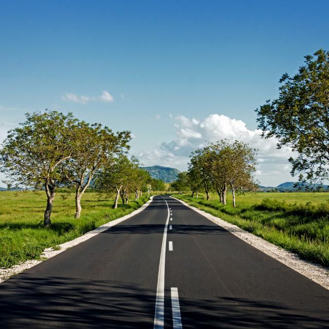 """Asphalt road"" stock image"