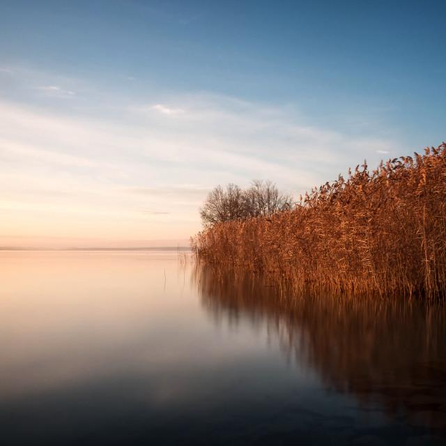 """Beautiful landscape"" stock image"