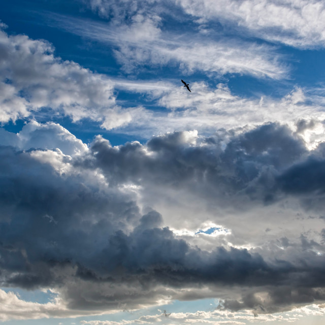 """""""Big powerful storm clouds at summer"""" stock image"""