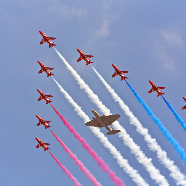 """""""Flying in formation"""" stock image"""