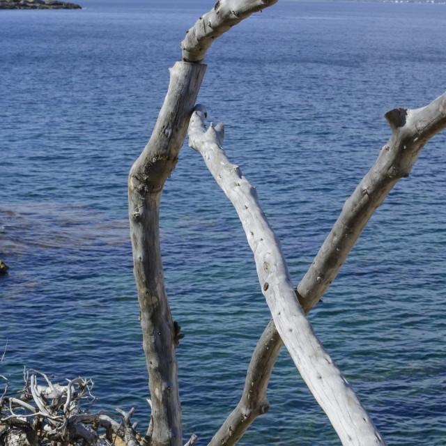 """""""Wood railing"""" stock image"""