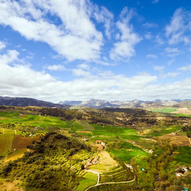 """""""Andalucia Landscape"""" stock image"""