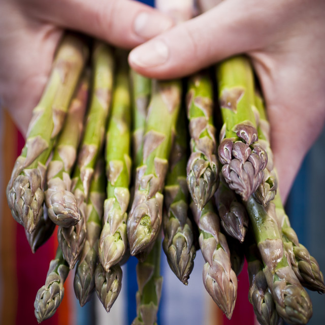 """British Asparagus"" stock image"