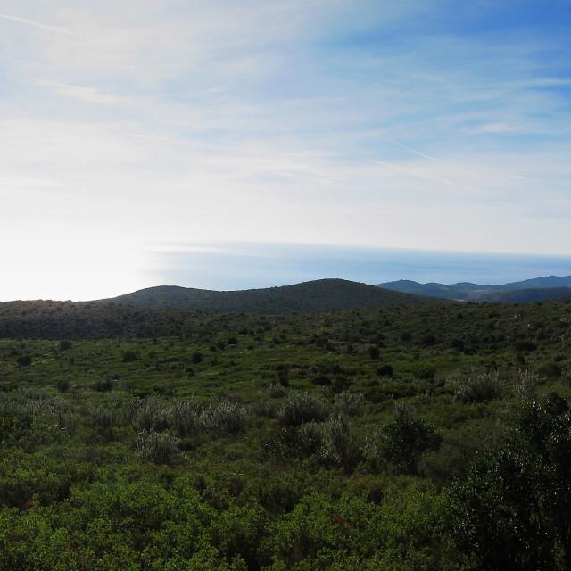 """""""Panorama view towards the sea"""" stock image"""