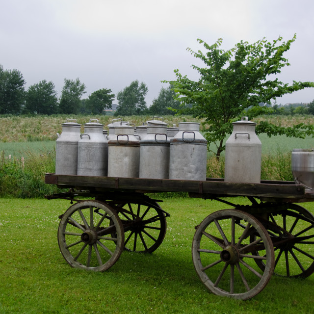 """""""Old milk cans on waggon"""" stock image"""
