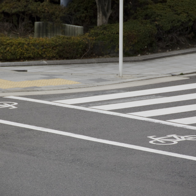 """""""Cycle track markings in a city"""" stock image"""