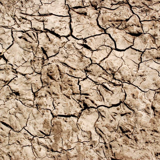 """Dry Ground"" stock image"