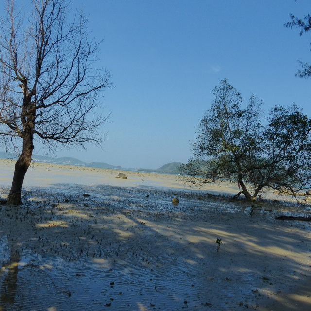 """Beach on Phuket island, Thailand 2"" stock image"