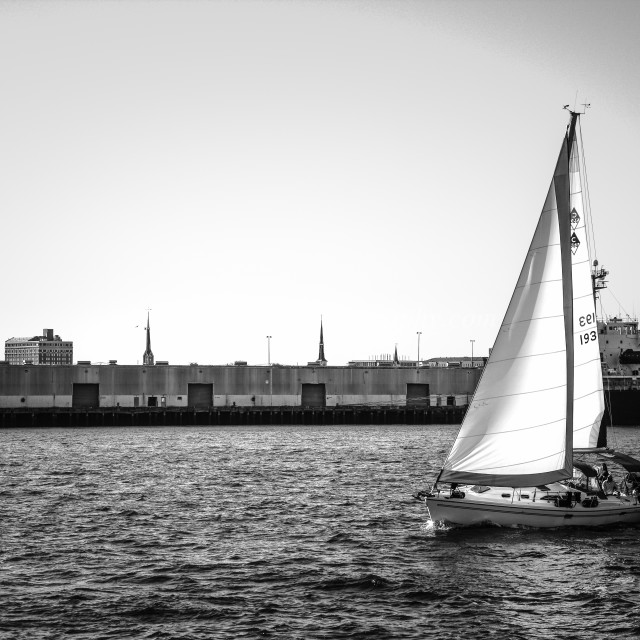 """Charleston Harbor Sail"" stock image"