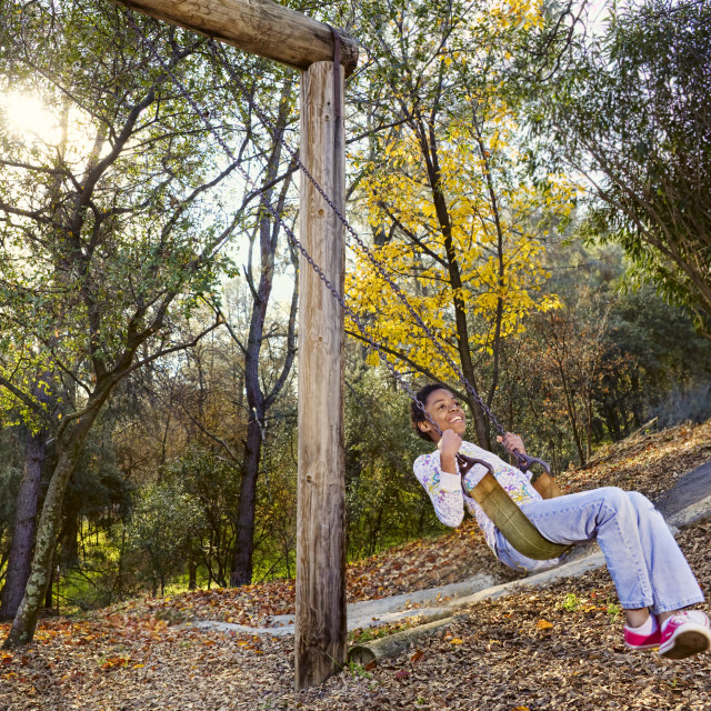 """Girl on a Swingset on a Fall Day"" stock image"