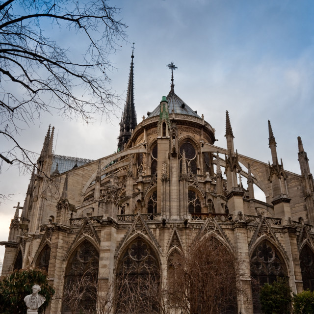 """""""Notre Dame Cathedral"""" stock image"""