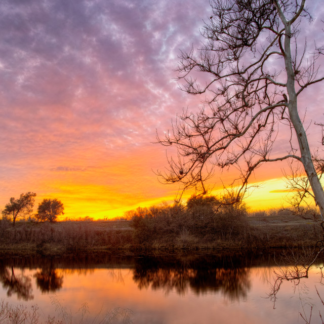 """""""Feather RIver Sunset"""" stock image"""