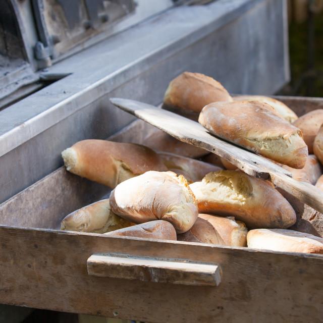"""freshly baked bread in wood"" stock image"