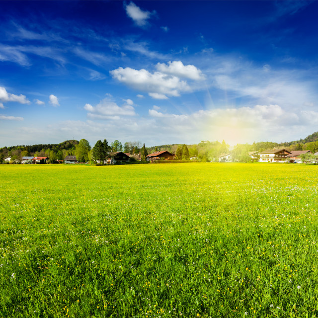 """""""Countryside meadow field with sun and blue sky"""" stock image"""