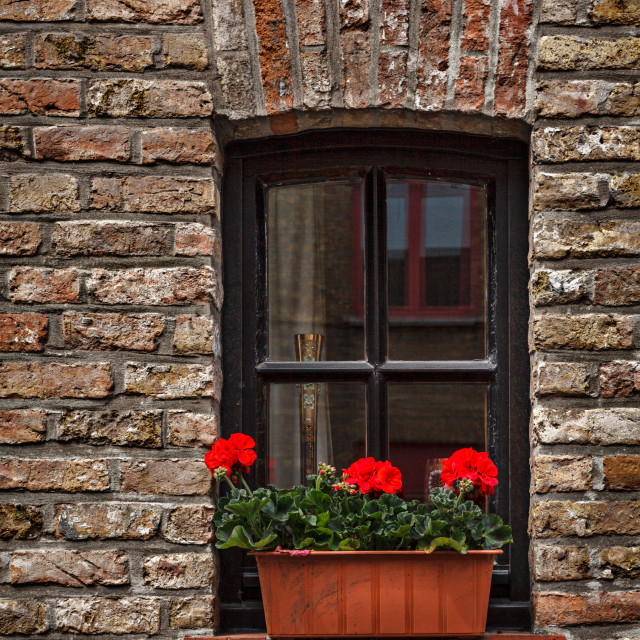 """""""Window in brick wall with flowers in Europe. Bruges (Brugge), Belgium"""" stock image"""