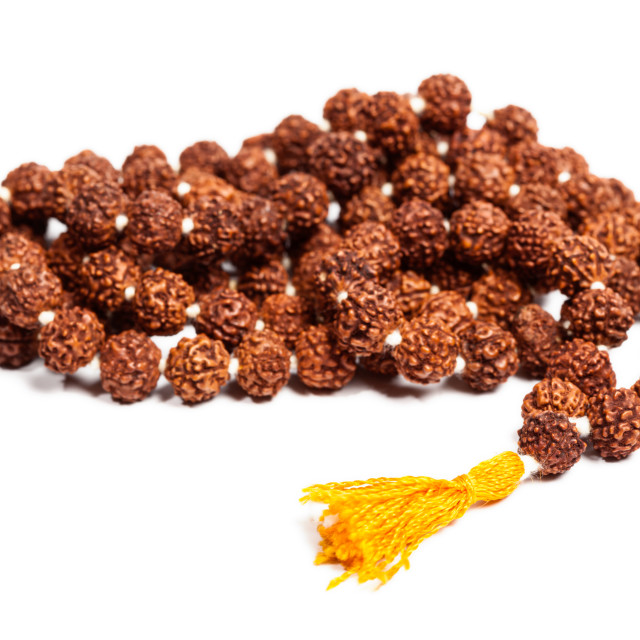 """Buddhist or Hinduist Japa mala (prayer beads) made of rudraksha isolated"" stock image"