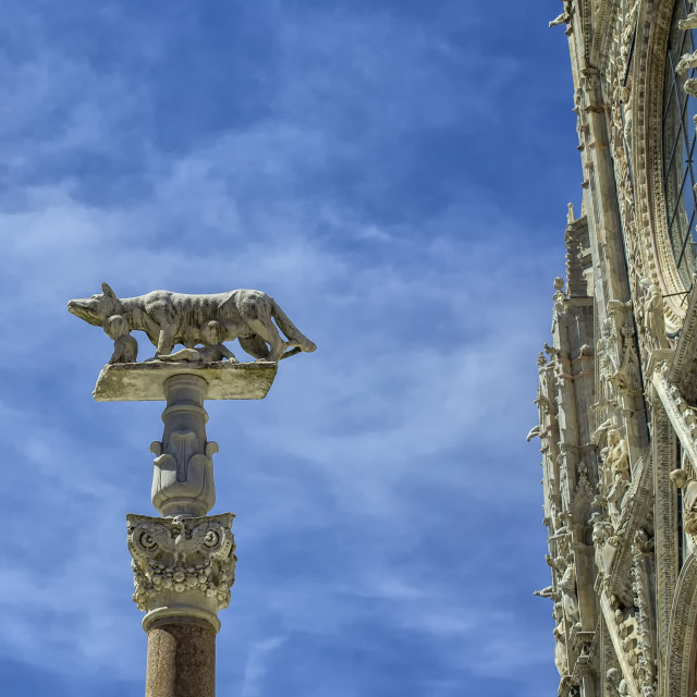 """Cathedral with column of wolf and Remus and Romulus in Siena"" stock image"