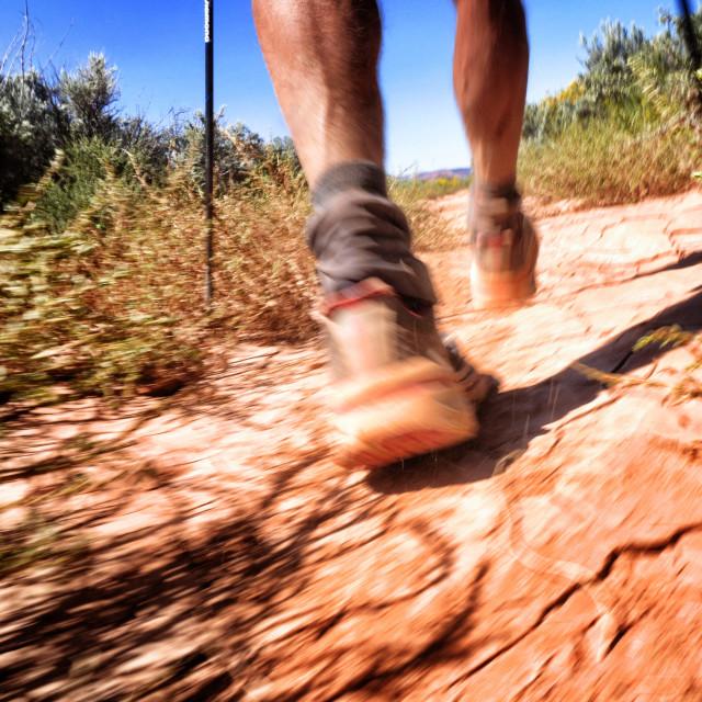 """""""Desert Feet"""" stock image"""