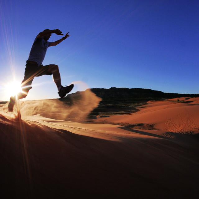 """""""Desert Runner"""" stock image"""