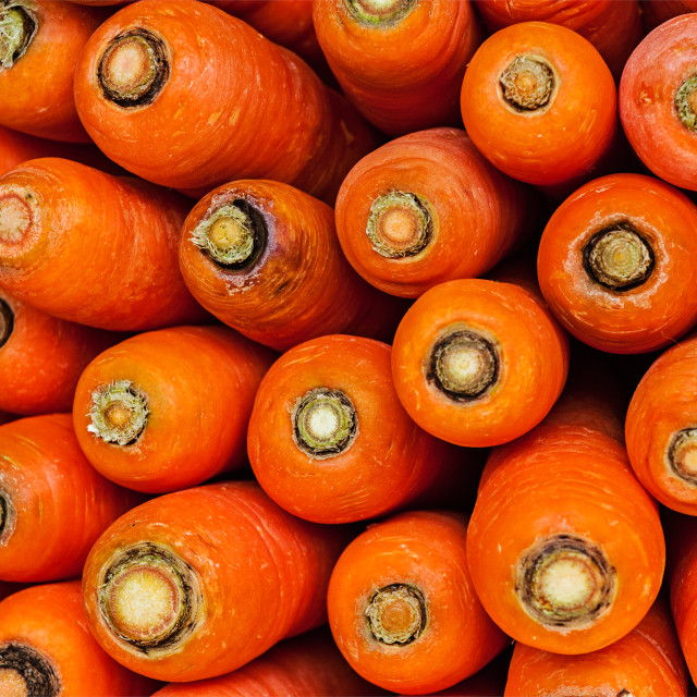 """""""Carrots close up"""" stock image"""