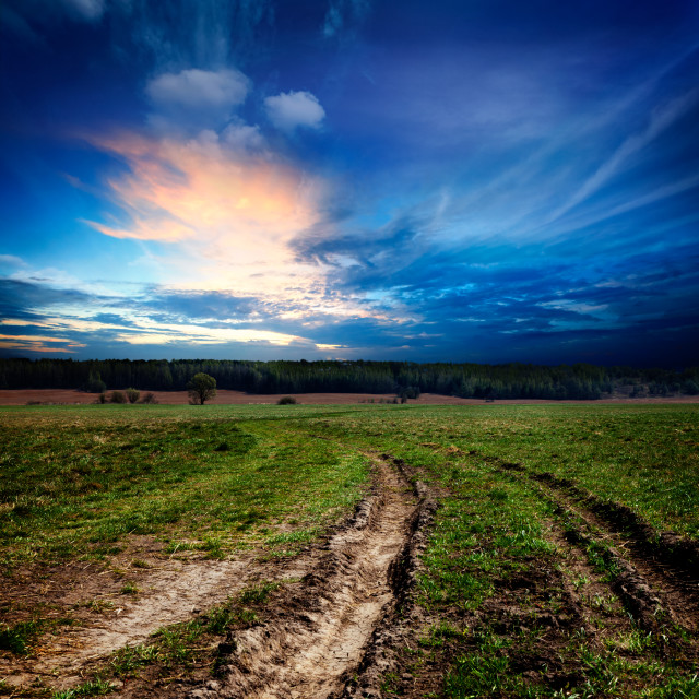 """Countryside landscape with dirt road"" stock image"