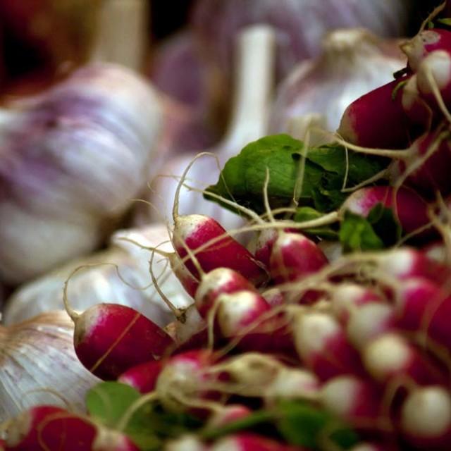 """Market, Garlic Bulbs and Radishes"" stock image"