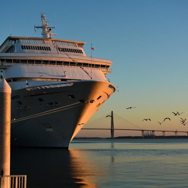 """""""Cruise"""" stock image"""