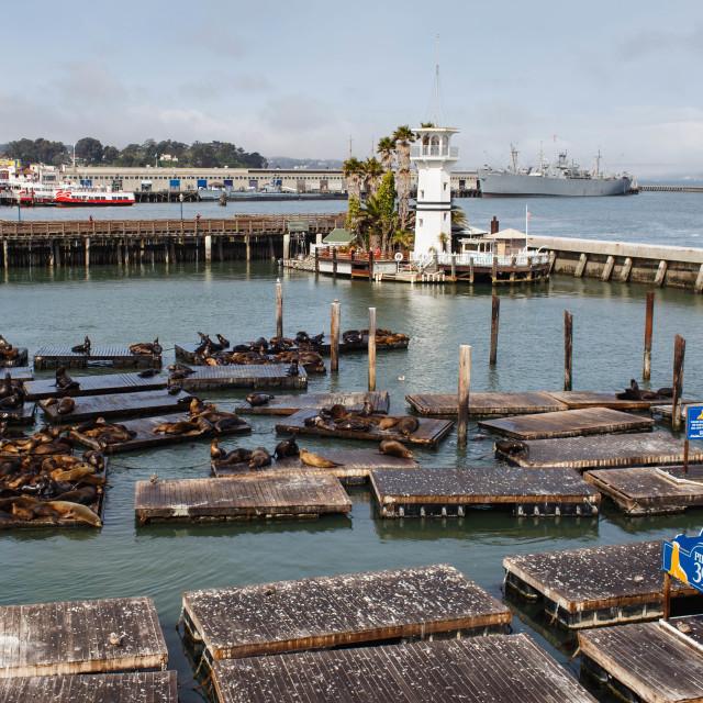 """Pier 39"" stock image"