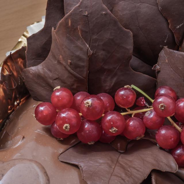 """Chocolate birthday cake with decorations"" stock image"