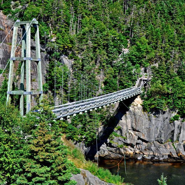 """""""La Manche Suspension Bridge"""" stock image"""