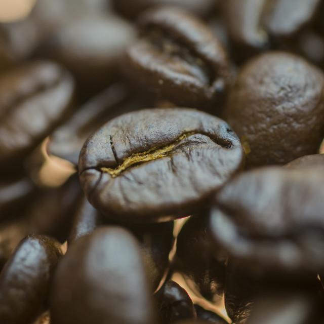 """""""Coffe Beans Macro 1"""" stock image"""