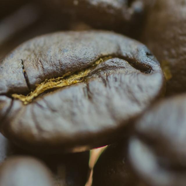 """Coffee Bean Macro 2"" stock image"