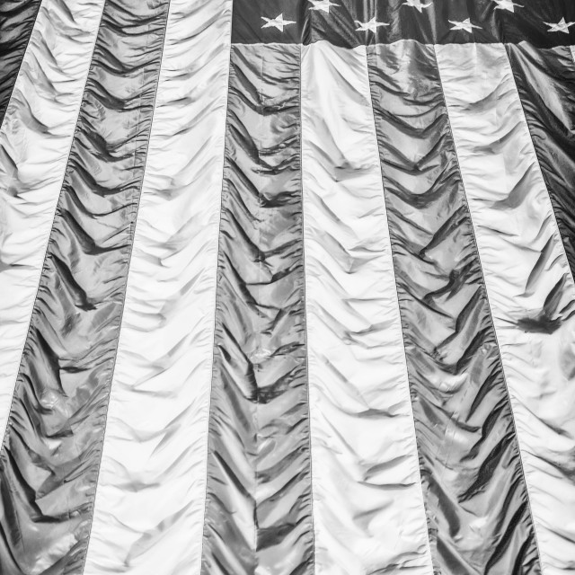 """""""The American Flag in Black and White"""" stock image"""