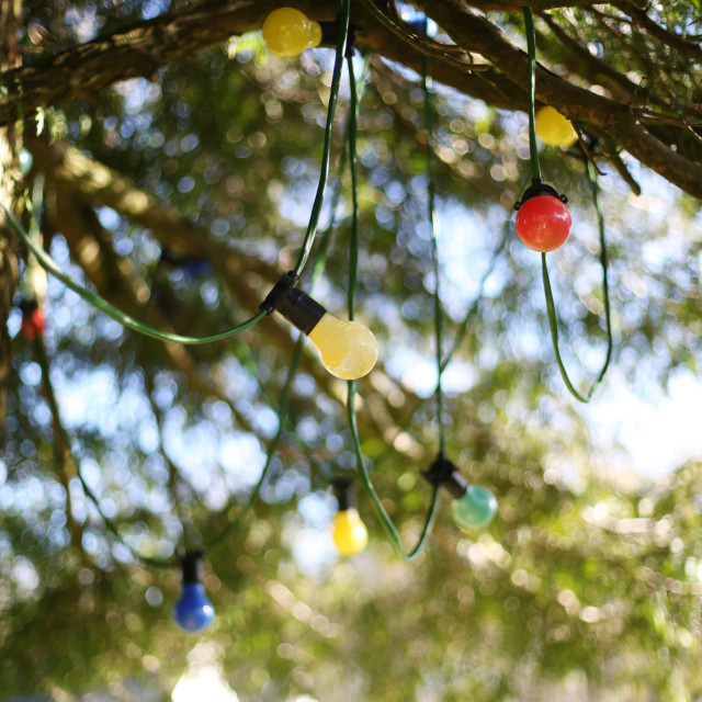 """Country Garden Fairy Lights"" stock image"