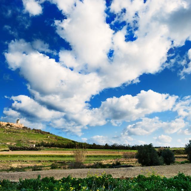 """Gozitan Countryside"" stock image"