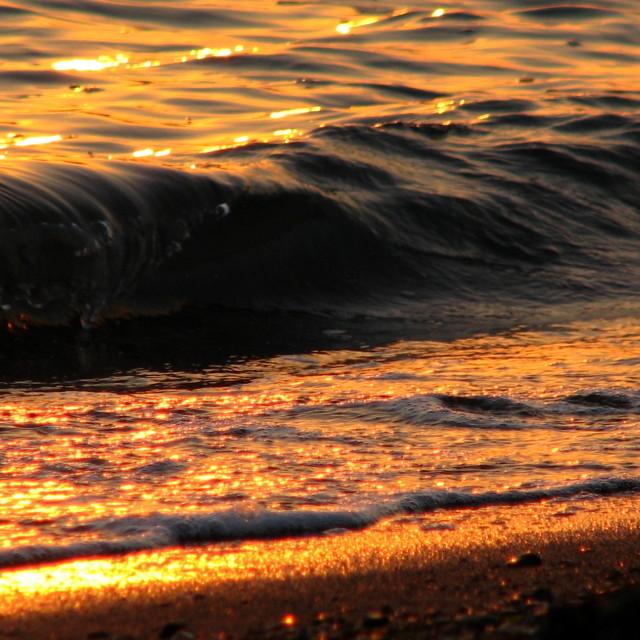 """A Golden Beach"" stock image"