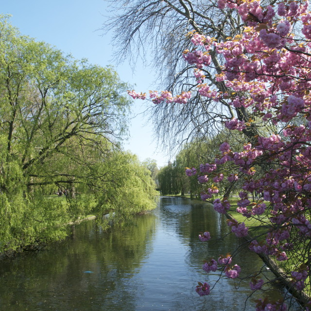 """Regent's Park in the spring"" stock image"