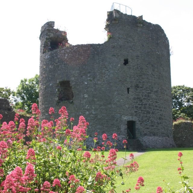 """""""The keep at Dundrum Castle"""" stock image"""