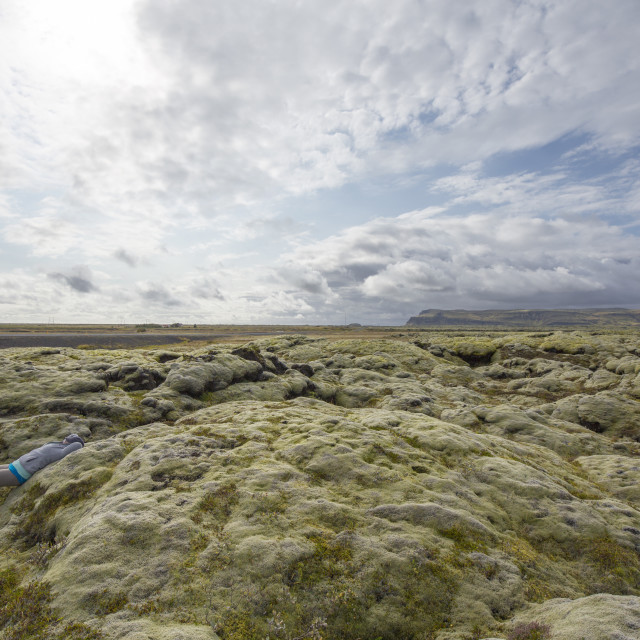 """Moss covered Lava Fields, Iceland"" stock image"
