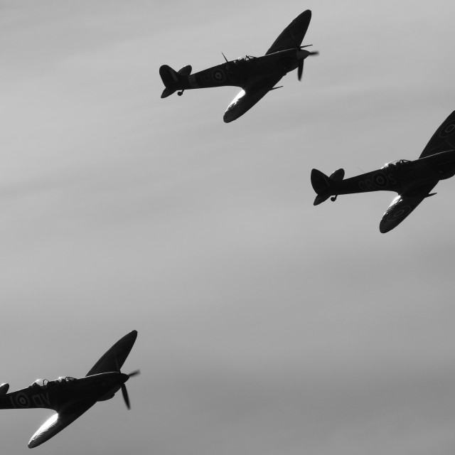 """Spitfires Black and White"" stock image"