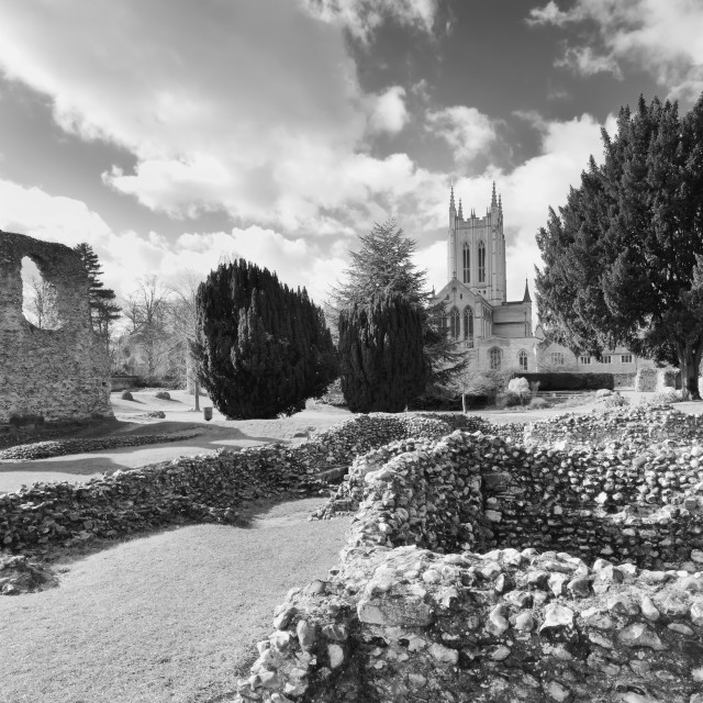 """""""Bury Cathedral"""" stock image"""